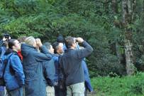 Suria-Lodge_Vogelbeobachtung-Quetzal-Tour_Foto-Suria-11-2018