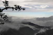 Suria-Lodge_Wanderung-Cerro-de-la-Muerte-2_Foto-Suria-11-2018