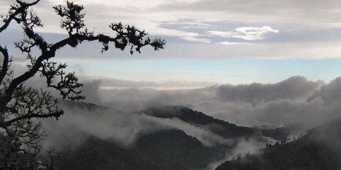 Suria Lodge Wanderung Cerro de la Muerte