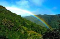 Suria-Lodge_Wanderung-Cerro-de-la-Muerte_Foto-Suria-11-2018