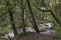 Suria-Lodge_Wanderung-San-Gerardo-Tal_Foto-Suria-11-2018