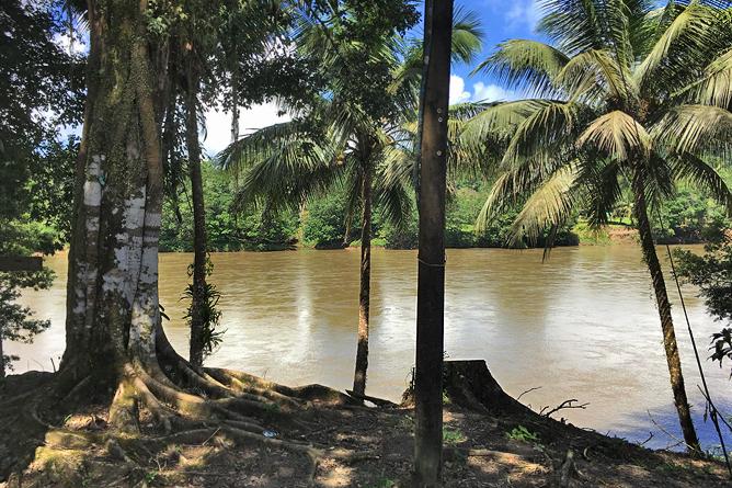Boca Tapada San Carlos Fluss