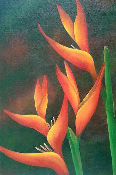 Heidy Jaen Porras Blumen Strelizien