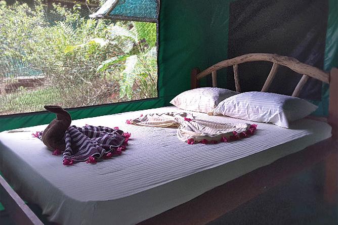 La Tarde Tent Cabin Doppelbett