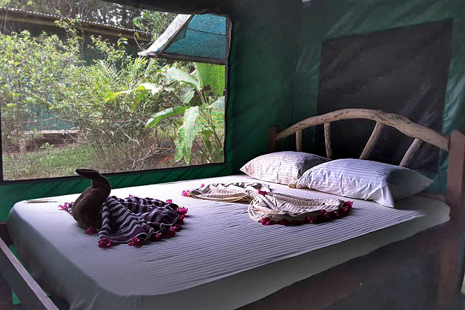 Osa Wild Nationalpark-Corcovado Carate La Leona Lodge