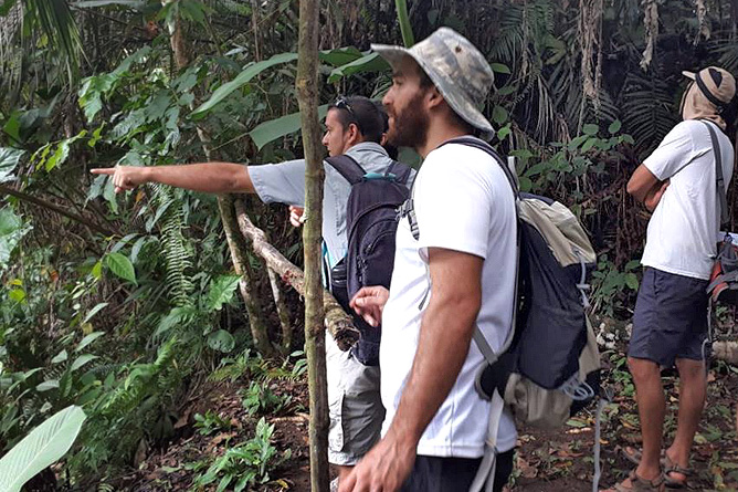 Osa Wild Nationalpark-Corcovado Tierbeobachtung