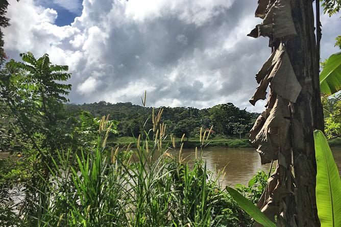 San Carlos Fluss Boca Tapada