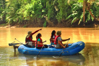 Canoa Tours Eco Safari Tour Caño Negro Canoa Aventuras