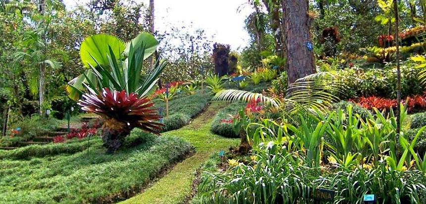 Casa Botania Botanischer Garten Wilson