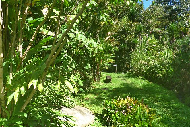Jardin Secreto • San Gerardo de Rivas Bromeliengarten Costa Rica 05