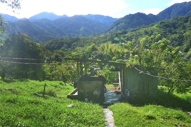 Kaesefabrik Canaan San Gerado de Rivas Farm und Weidefläche