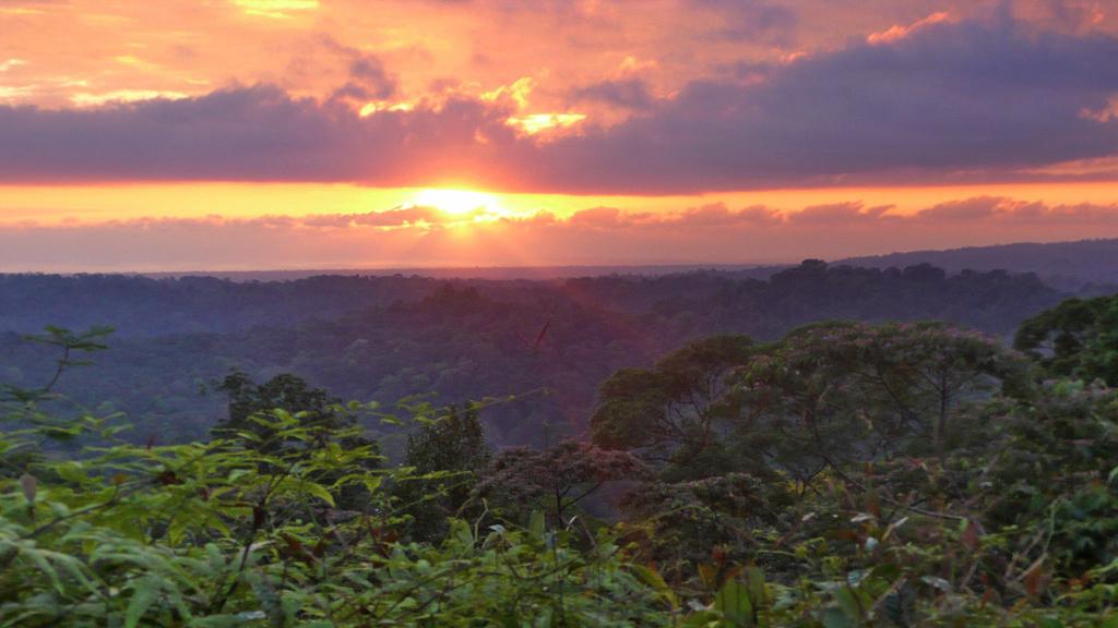 Osa Wild Corcovado Nationalpark Blick