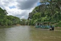 Canoa Tours Negro Bootsfahrt am Rio Frio Unique Caño