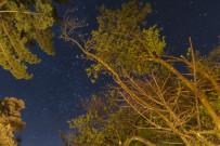 Aguti Hotel - Nachthimmel