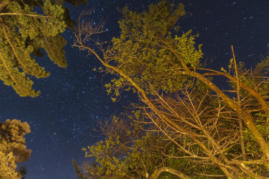 Aguti Hotel – Nachthimmel