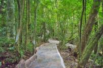 Aguti Reservat - Trails