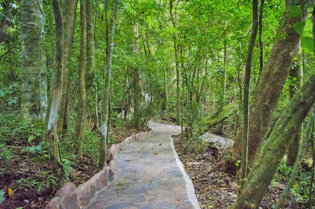 Aguti Reservat – Trails