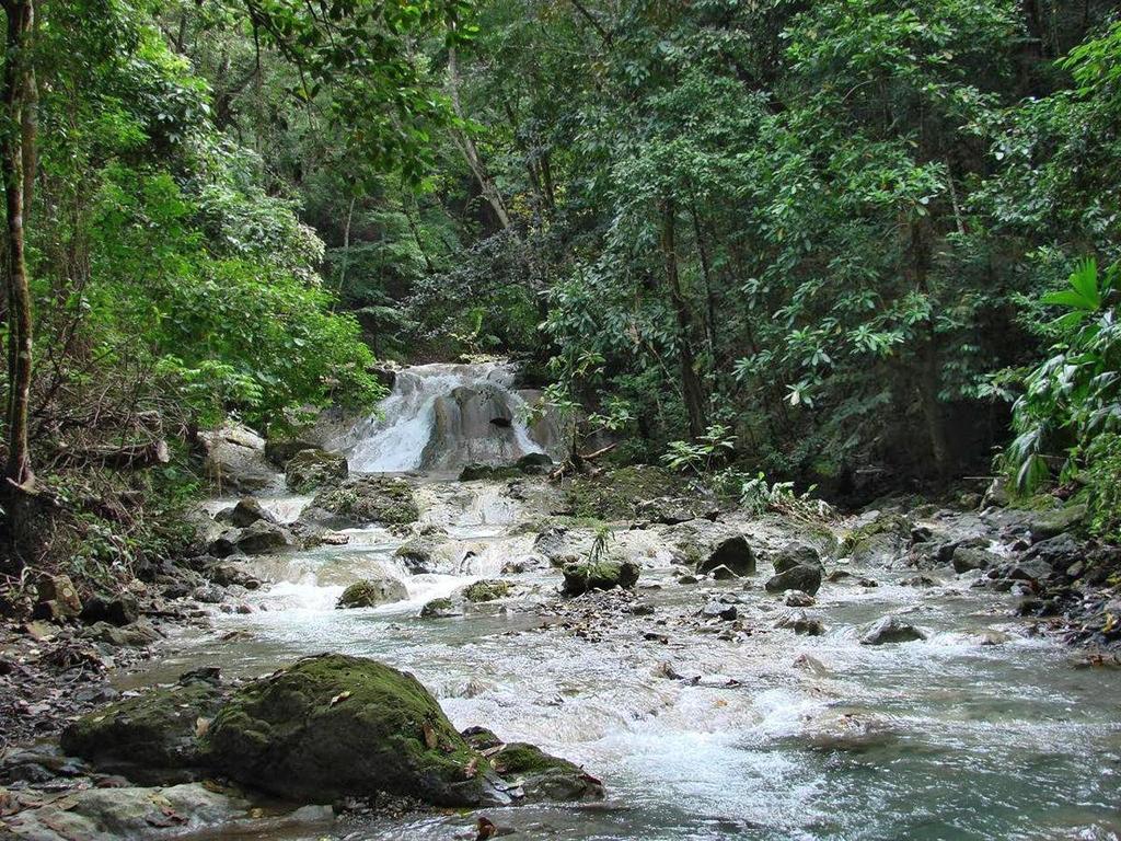 Posada Cerro Escondido – Fluss