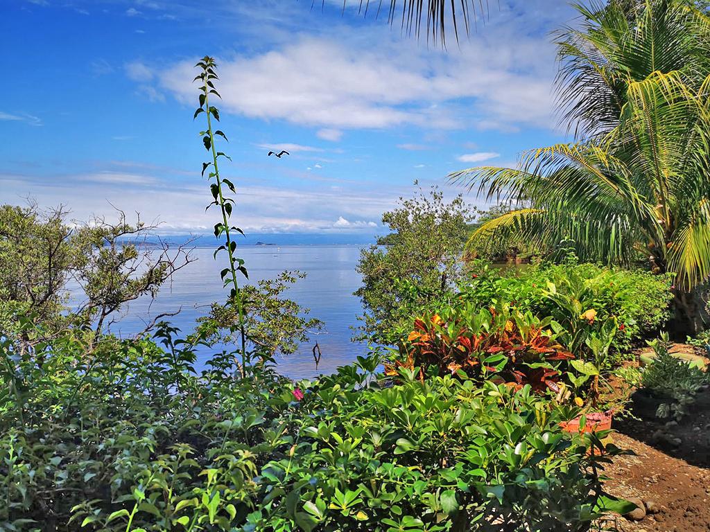 Curú Refugium Costa Rica – Aussichtspunkt