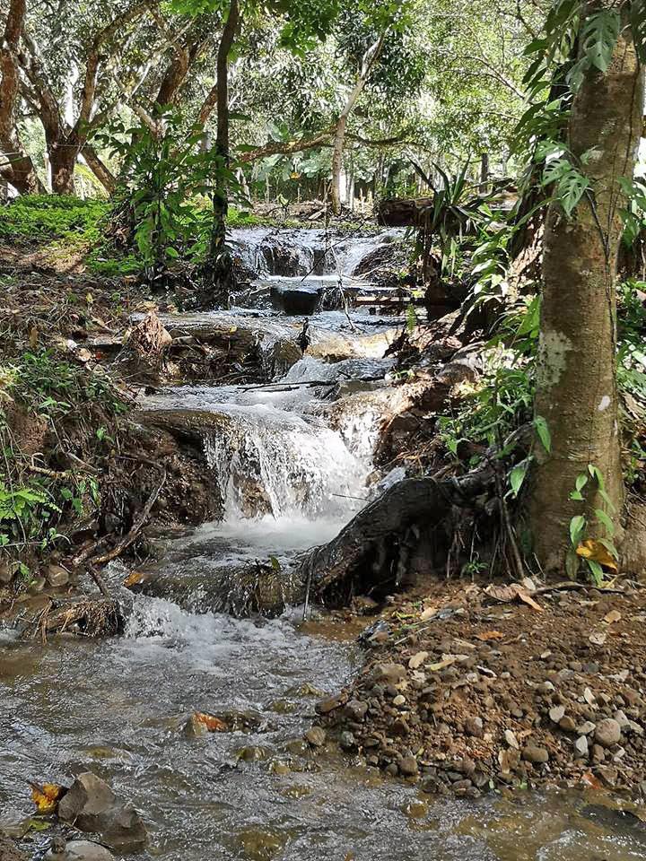Curú Refugium – Fluss Curú
