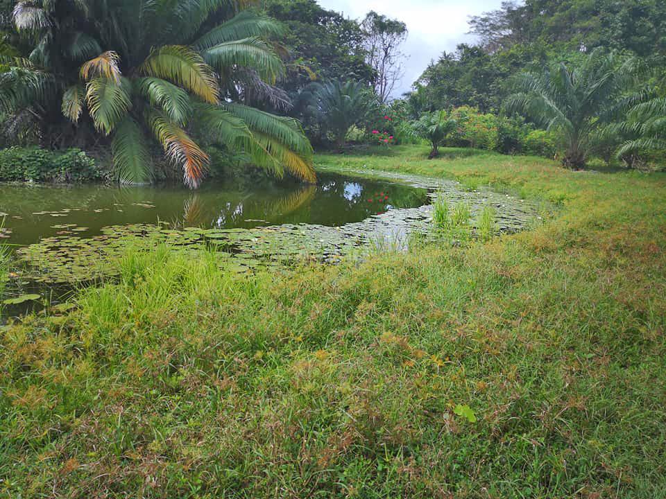 Curú Refugium – Lagune