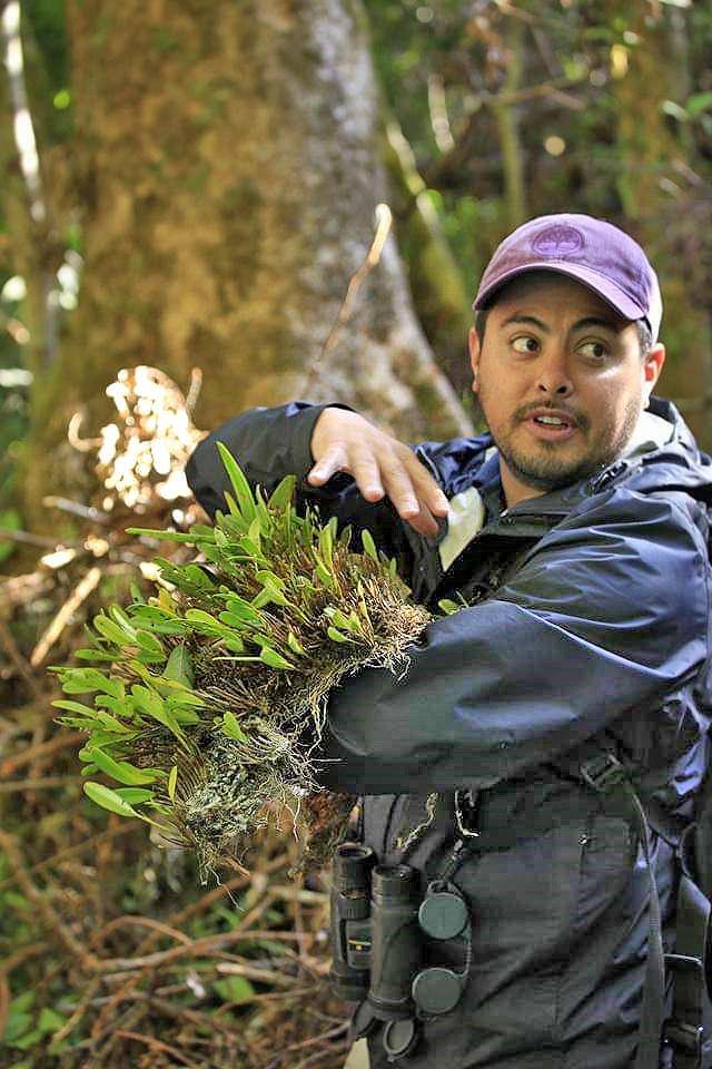 Freicer – Guide in Monteverde Nebelwald Reservat