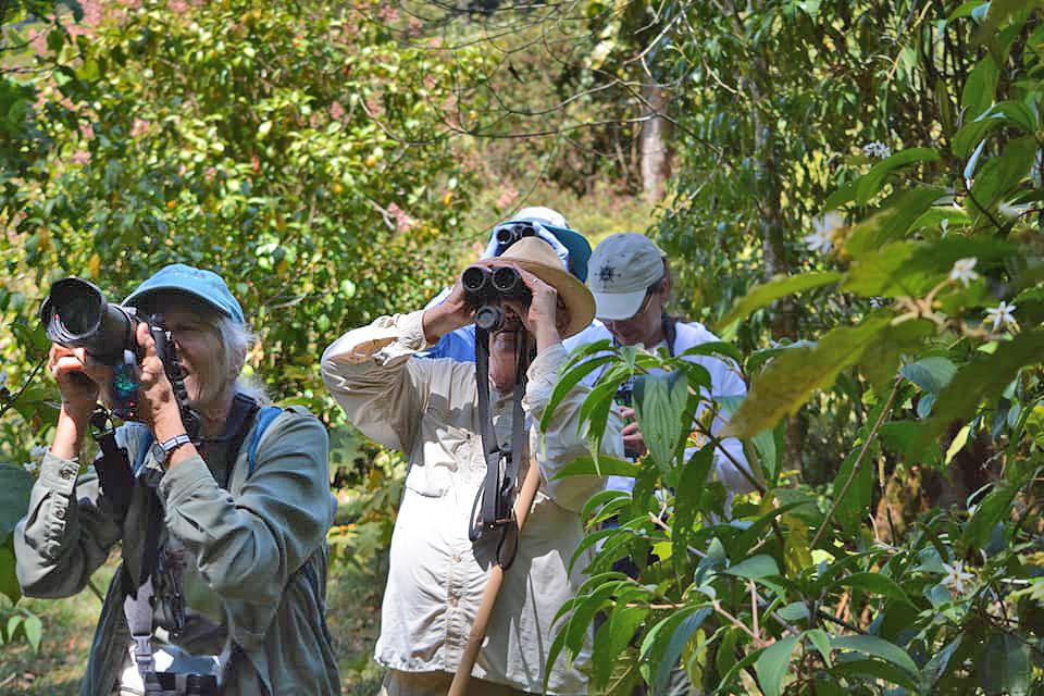 Private Guides  – Costa Rica Rundreise (Foto: Desafio)