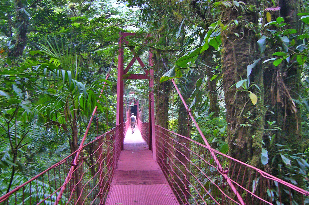 Private Guides: Monteverde Hängebrücken – Costa Rica Rundreise