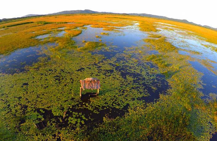 Rancho Humo Estancia – Wetland Tour