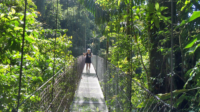 Tenorio – Hängebrücke Heliconias