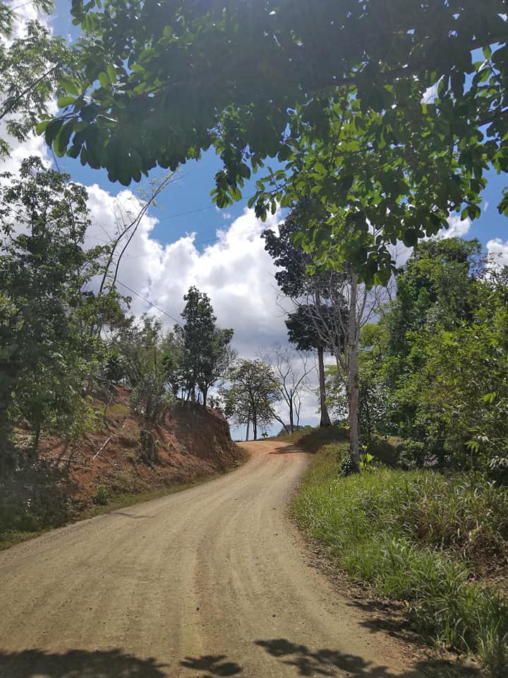 Goldmine Rancho Quemado – Zufahrtsstrasse