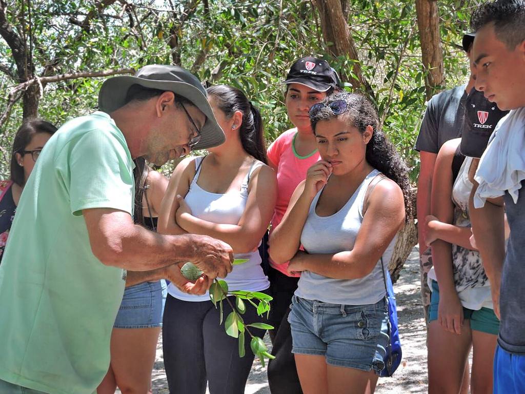 Maro Tours – Insel Chira: Aufforstungsstation