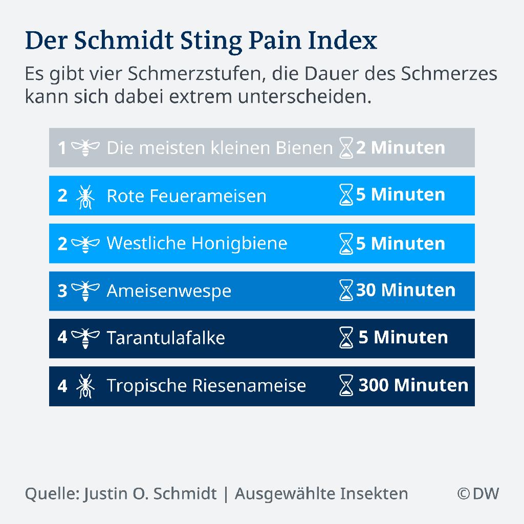 Stichschmerz-Tabelle, Bild: Deutsche Welle