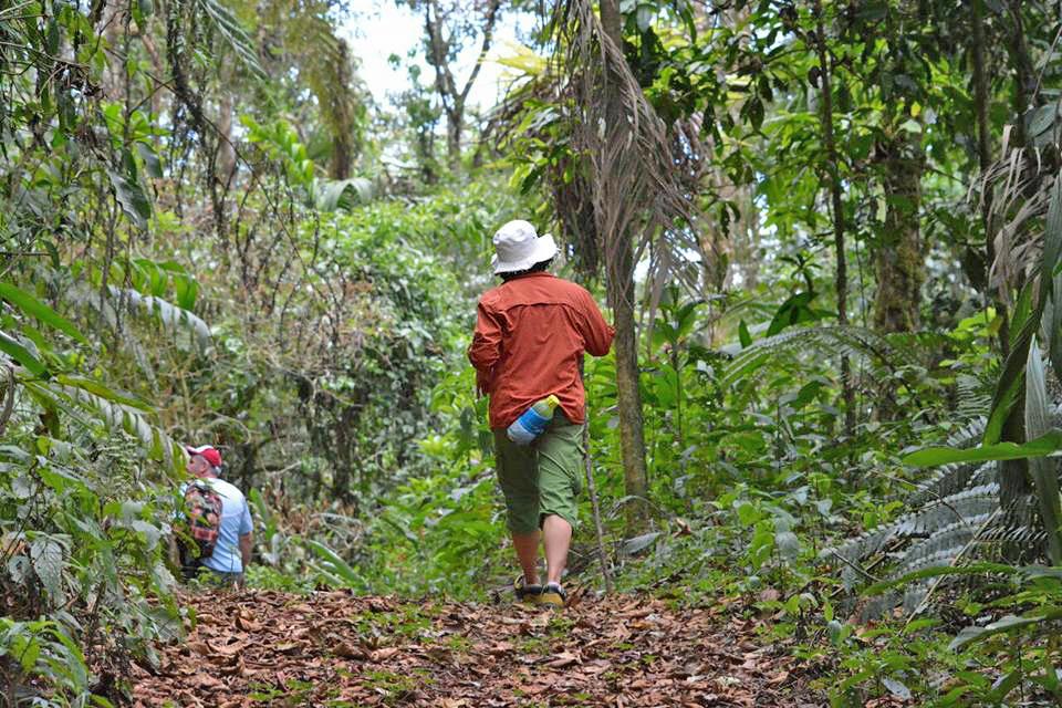 Trekking Las Tablas – Wandern und Birding in Costa Rica