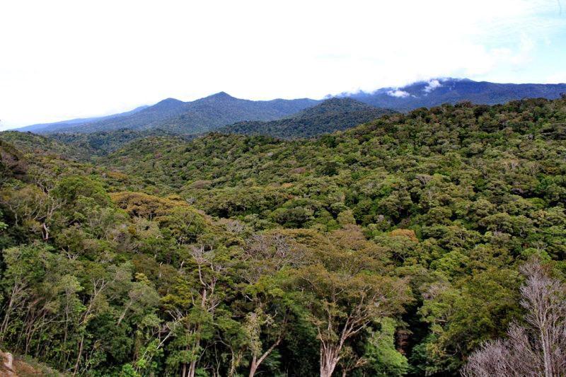 Trekking Las Tablas – Reservat
