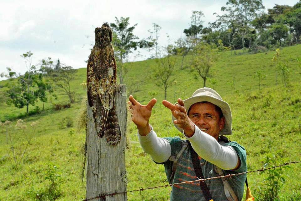 Trekking Las Tablas – Vogelbeobachtung mit Guide