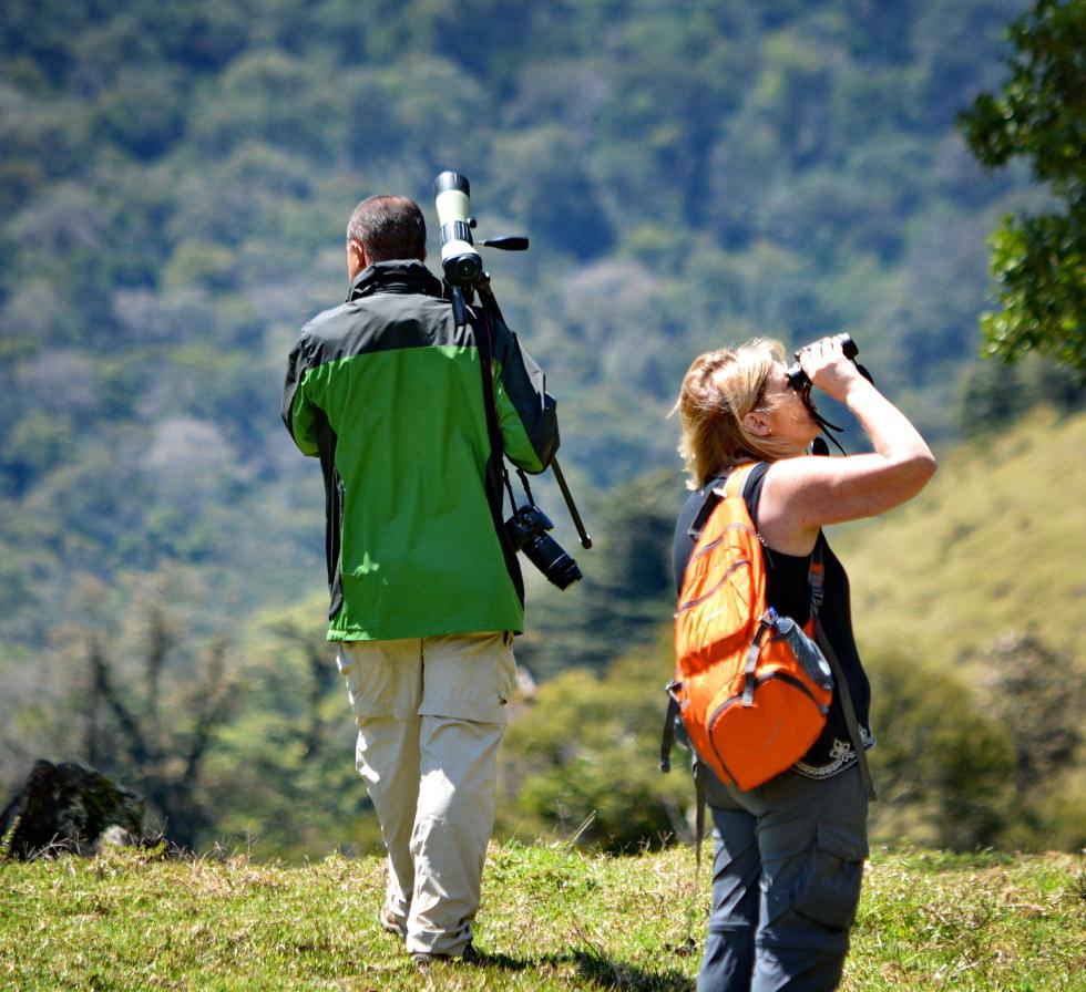 Trekking Las Tablas – Vogelbeobachtung, Birding mit Guide