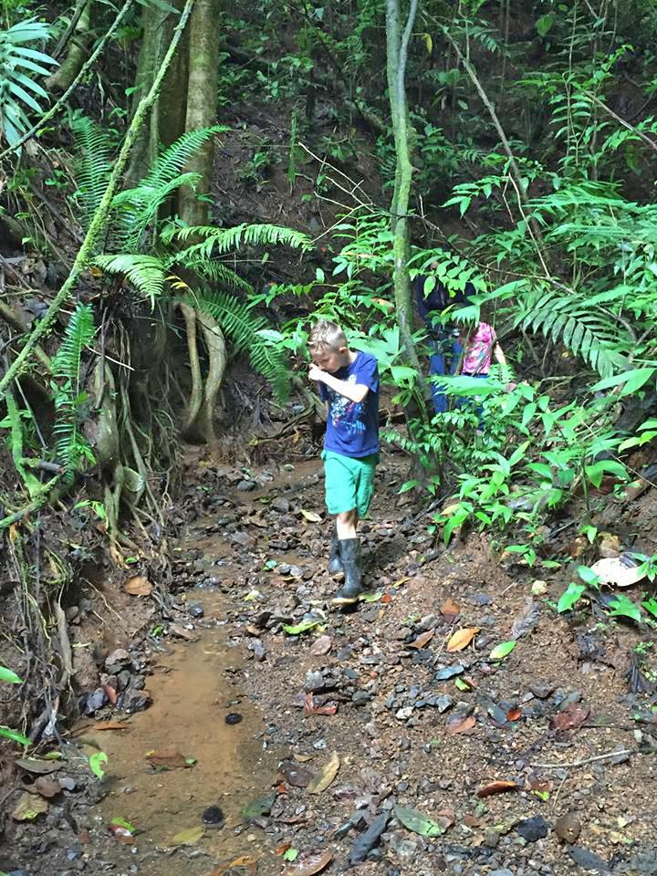Froschsuche in Costa Rica