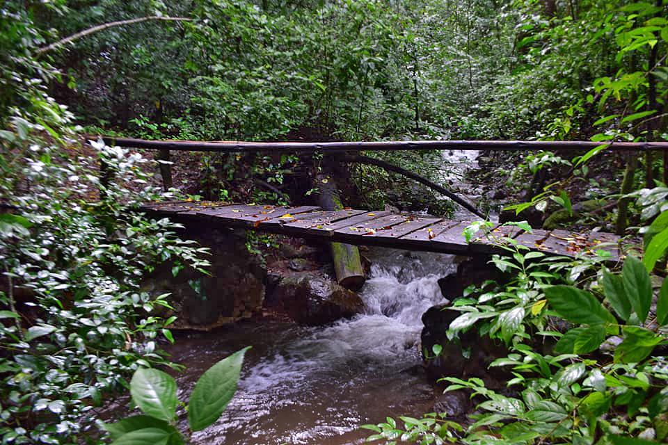 nationalpark-monte-alto-costa-rica-03