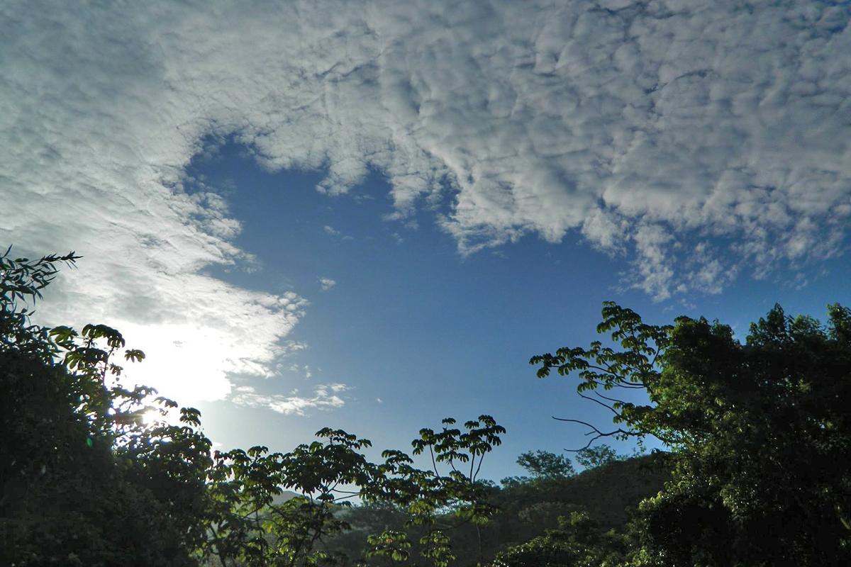 nationalpark-monte-alto-costa-rica-06