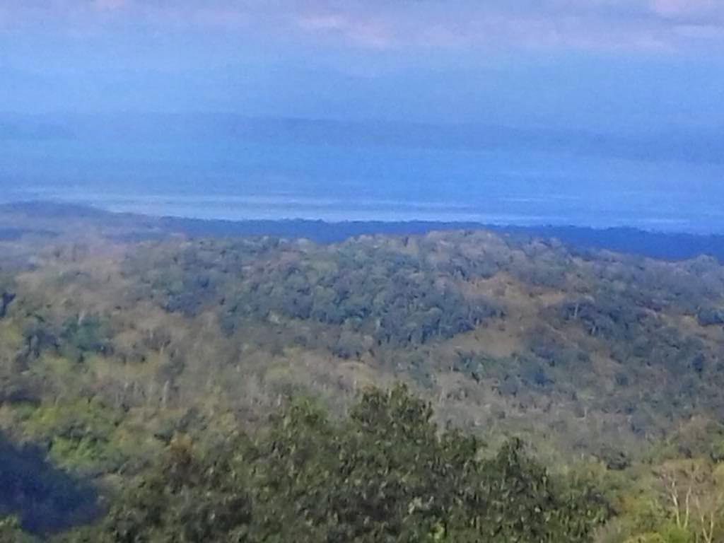 La Tarde – Blick auf Golfo Dulce | Costa Rica