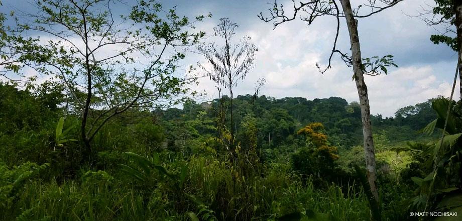 La Tarde – Reservat | Costa Rica