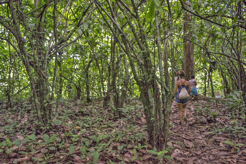 Durupe – Hike ATEC