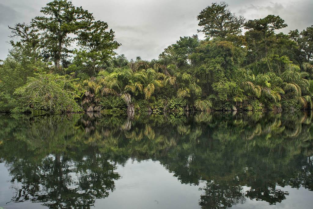 Laguna Gandoca Manzanillo – ATEC