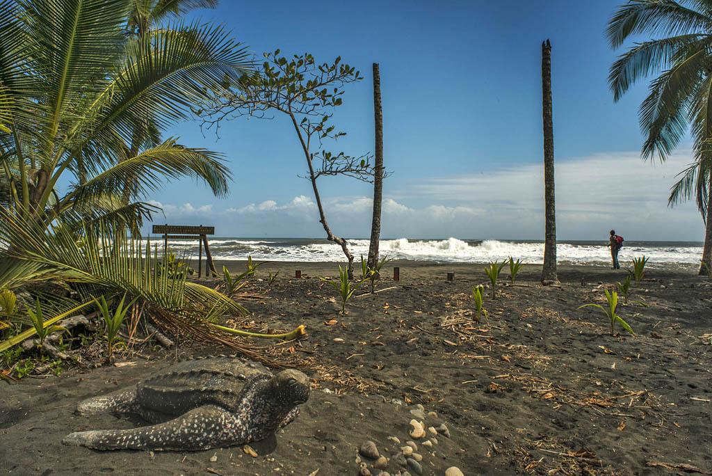 Laguna Manzanillo – Playa Manzanillo ATEC