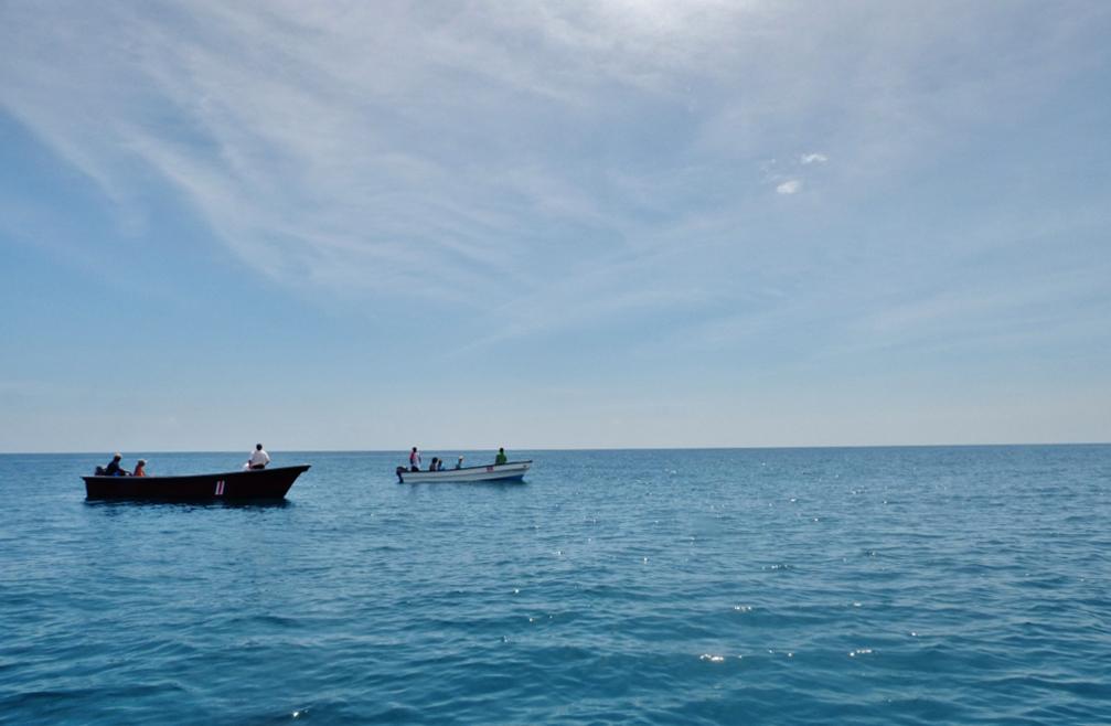 Delfin Tour Manzanillo – Boote ATEC