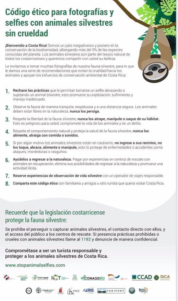Stopanimalselfies- Kampagne Costa Rica
