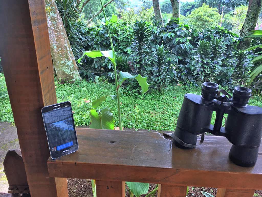 Tierbeobachtung – Handy