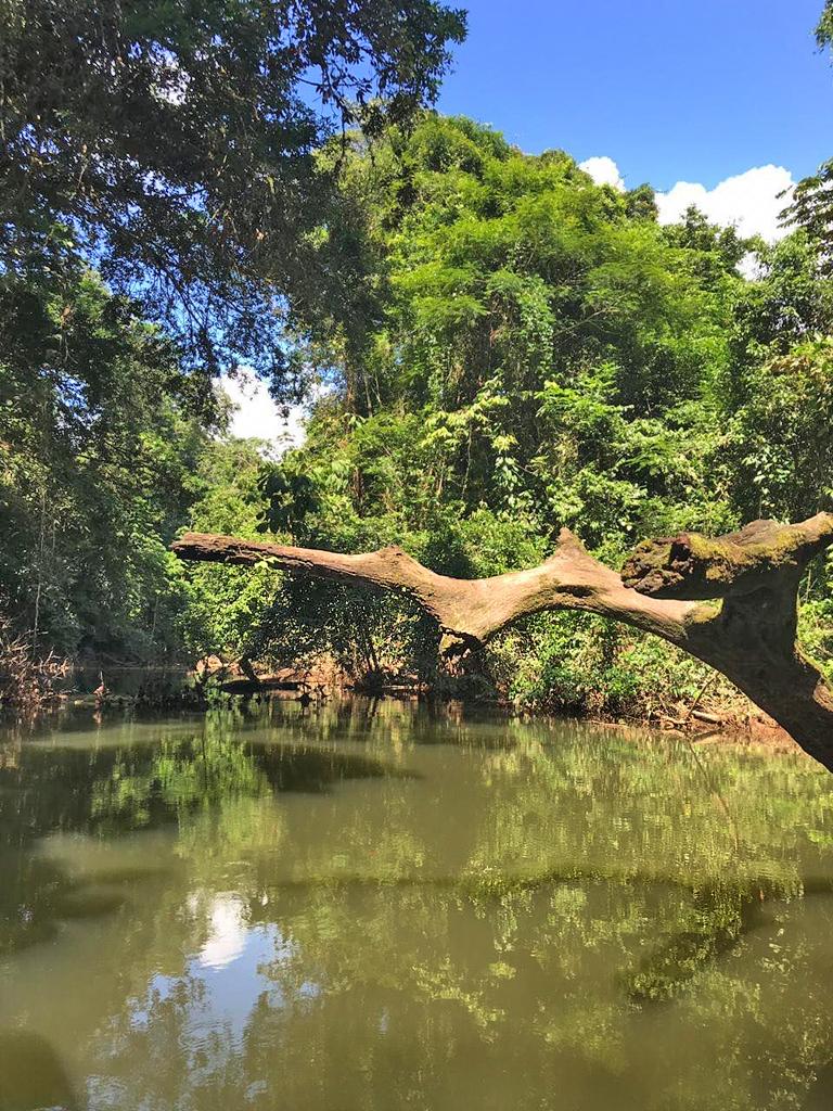 Tapir Lodge – Flussufer San Juan