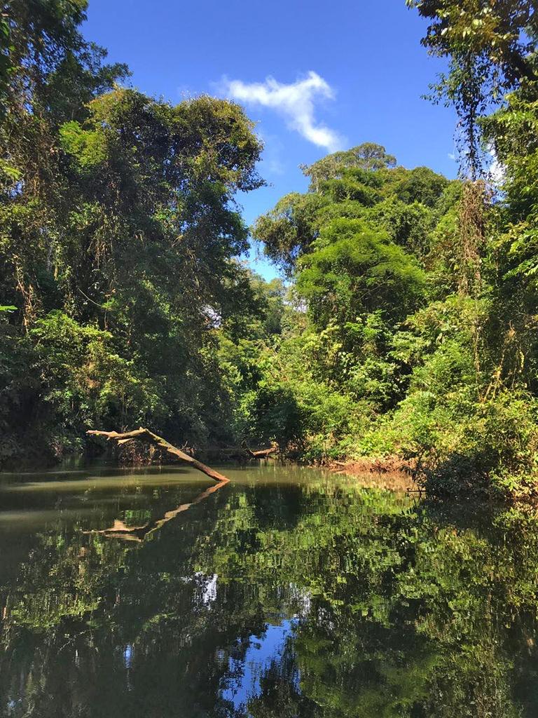 Tapir Lodge – Rio San Juan